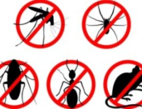 Odluka o donošenju programa mjera i provedbenog plana suzbijanja patogenih mikroorganizama mjerama dezinfekcije, dezinsekcije i deratizacije na području Općine Negoslavci za 2021. godinu