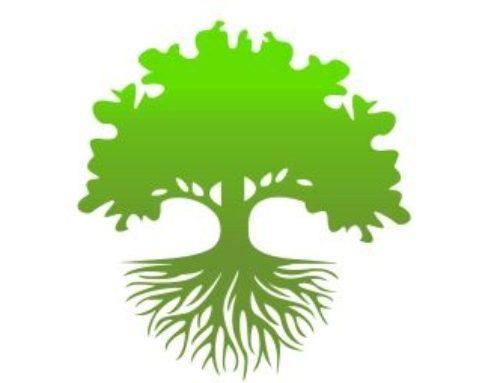 Općina Negoslavci se pridružila kampanji sadnje stabala pod nazivom Tjedan kolektivne sadnje stabala u Hrvatskoj 2021. g.